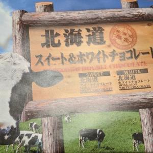 北海道のチョコ【北海道スイート&ホワイトチョコレート】をいただきました!