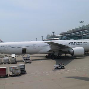 【日本航空 JL045】羽田からパリへのエコノミーフライトは食事が充実!