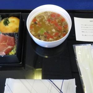 ANAプレミアムクラス再考【ANA NH583】早朝便は機材も残念、食事も損!?