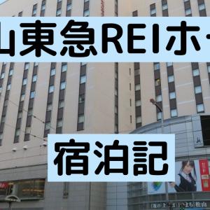 東急ブランド【松山東急REIホテル】無難な一泊を楽しめます!