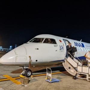 実に1年ぶりの飛行機【ANA NH1650】まだまだ欠航だらけ