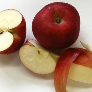 リンゴの季節です♪