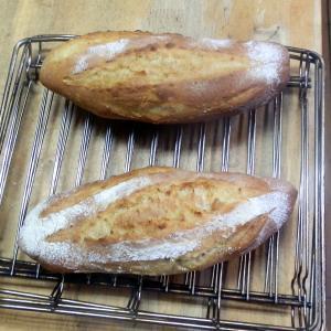 フランスパンっぽい