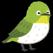 鳥のお宿、その後