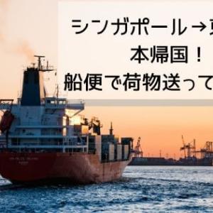 シンガポールから船便使ってみた!【本帰国・引っ越し時の荷物対策】
