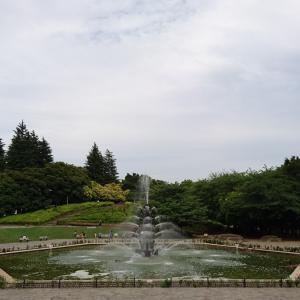 世田谷公園に静態保存されているD51 272を見に行く