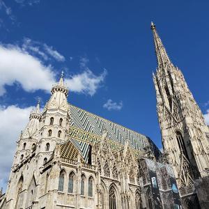 大きすぎて写真におさまらない!シュテファン大聖堂