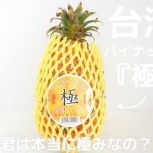 話題の台湾パイナップルをやっと入手!芯まで食べられて甘くて美味しい?!『台湾パイン 極(きわみ)』を食べてみた感想