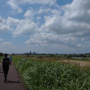 スポーツメイトラン市川江戸川河川敷マラソン大会(千葉県、2020年8月)