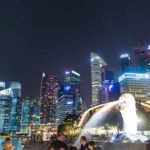死刑率が世界一!シンガポールの厳しすぎる法律とは!?