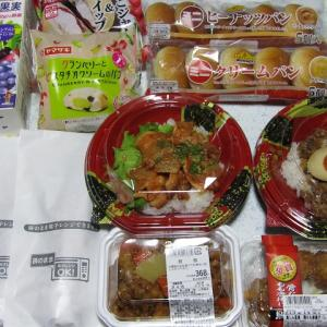 我が家のお昼ご飯&晩御飯で~~(^^♪