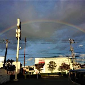 ヾ(^▽\)  またまたー♪ 二児 !! いや違った、虹をゲットできた
