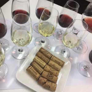 ブログを読んでくださる皆様、いつもありがとうございます!今日のおすすめは、アリゴテの白ワイン♪