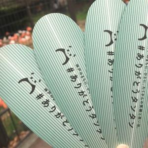 神戸市立王子動物園で最後のタンタンに会ってきました