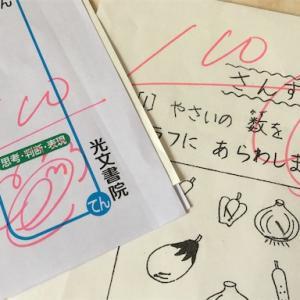 【小学2年生】テストで100点取れたよ!嬉しかったよ!