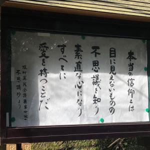 テーマは木のオーラを感じる。1/31(金)来宮神社オフ会