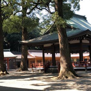 2/23 神社仏閣ソムリエセミナーレベル1(木のオーラを感じる)