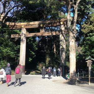 東京で1番のパワースポット明治神宮の森で瞑想会。