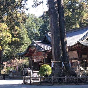 田無神社の龍神別の御利益