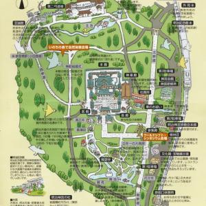 関東最大級の結界、明治神宮の森