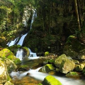 双川峡 養戸の滝
