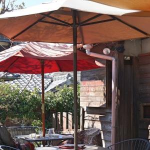 Il Rifugio Hayama(イル・リフージョ・ハヤマ)〜テラス席なら愛犬同伴可能な神奈川県葉山町のイタリア料理店