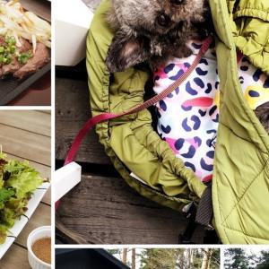 55STEAK〜テラス席なら愛犬同伴可能な富士河口湖町のステーキレストラン