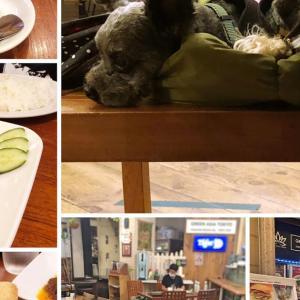 GREEN ASIA TOKYO(グリーンアジアトウキョウ)〜店内愛犬同伴可能なお台場のヴィーナスフォート内の東南アジアレストラン