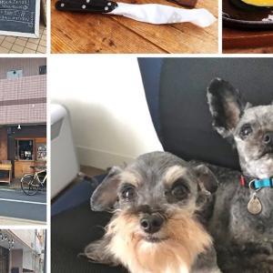 フォレストコーヒー (FOREST COFFEE)〜テラス席なら愛犬同伴可能な川崎市中原区のコーヒーショップ・レストラン
