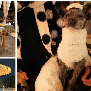 ひつじのショーンビレッジ ショップ&カフェ〜テラス席なら愛犬同伴可能な東京都町田市のキャラクターカフェ