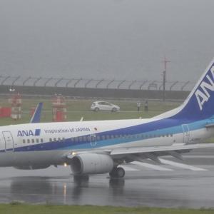 ANAB737-700退役記念チャーターフライト