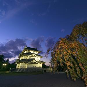 弘前城 菊と紅葉祭り月光と城