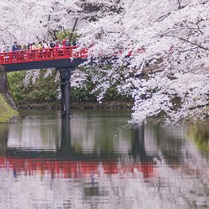 弘前観桜会2019