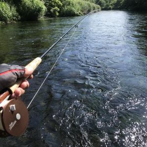 好きな釣りをのんびりと