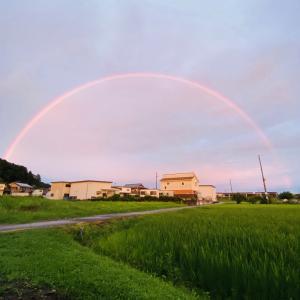 虹と夕日!(^^)!