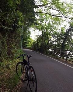 尾張広域緑道を走る(4)