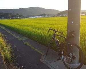 長良川へ走る