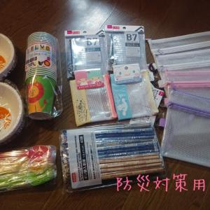 100円ショップ、2020年初買い回り②ダイソー