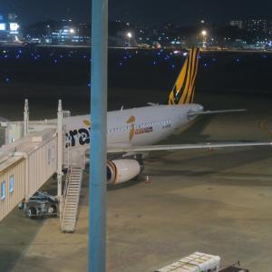 タイガーエア台湾 福岡発高雄行き就航初便搭乗