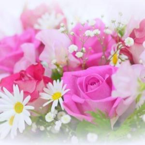 【1月生まれのあの人に】誕生石・誕生花のお酒を贈りたい!