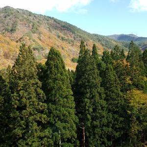 山形からの風景