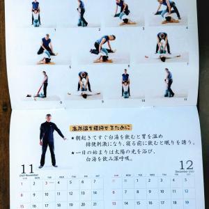 11月の自力整体実技のテーマは足指力アップです!