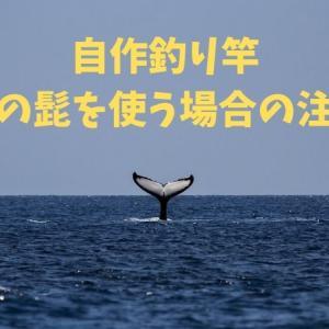 自作釣り竿 クジラの髭を使う場合の注意点!!