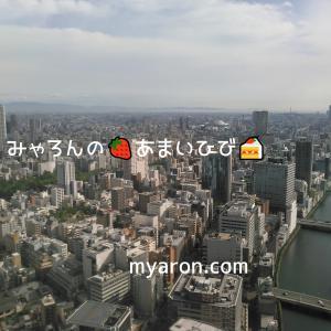 コンラッド大阪・お泊り編3-景色