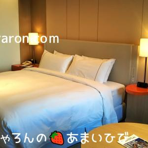 シェラトン都ホテル大阪お泊り編-お部屋3