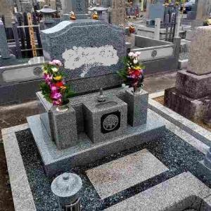 母の7回忌法要は中止にしたので墓参りに行きました