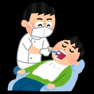 歯の定期検診で一本折れていました