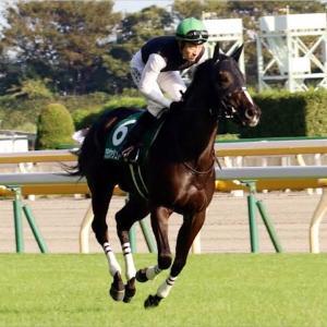 【競馬】今年の阪神JFは、、、
