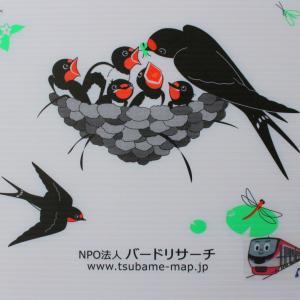 4/10(水)自然・野鳥ニュース