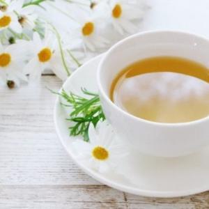 ハーブネトルは花粉症や乳腺炎に効果的な万能ハーブ